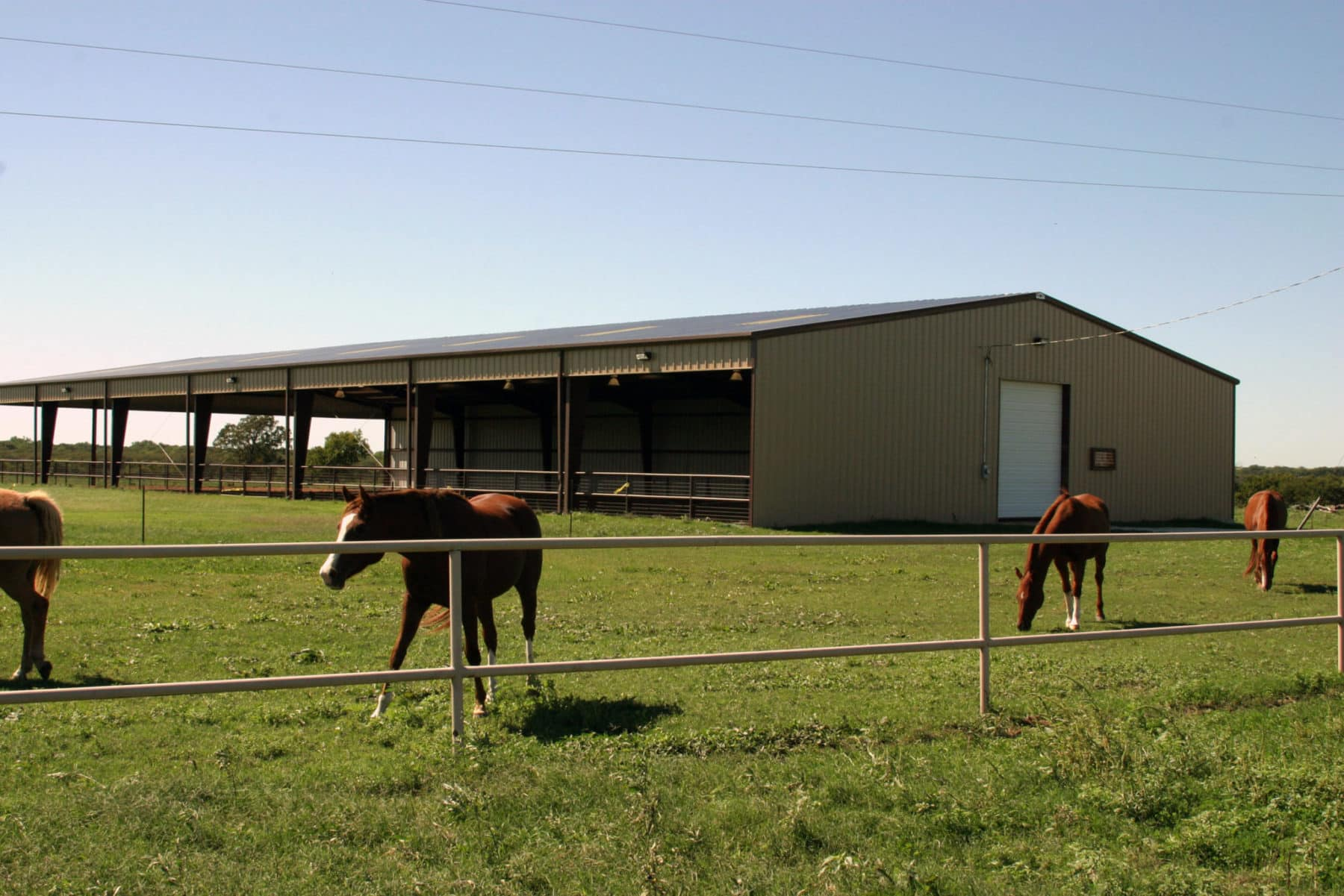 Ranch_Horse_Pavillion