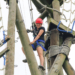 RopesCourse02