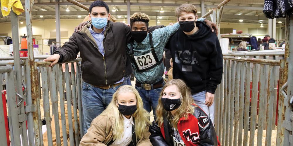 News-Notes_Livestock_Swine-Team